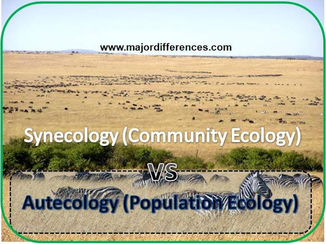 Autecology vs Synecology