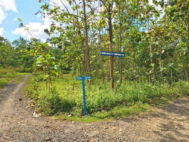 petunjuk arah menuju bukit panguk