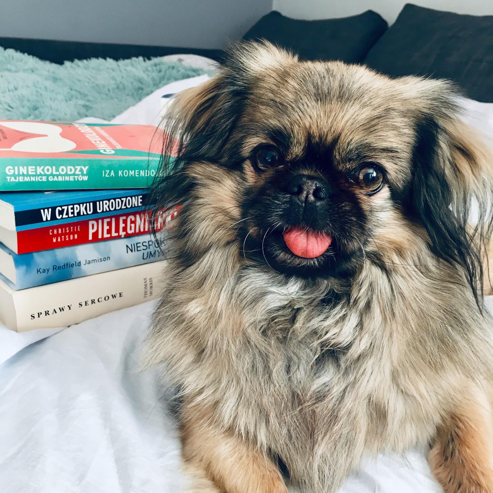 Siostro, tabletka! – czyli najlepsze książki z medycyną w tle #2