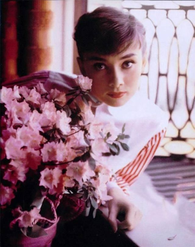 Hepburns style the fashion icon that is still influencing women these gorgeous photos of audrey hepburn from the 1950s and 1960s that will show you the reason why mightylinksfo