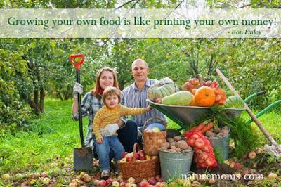 Το να καλλιεργείς την τροφή σου είναι σαν έχεις δικά σου λεφτά