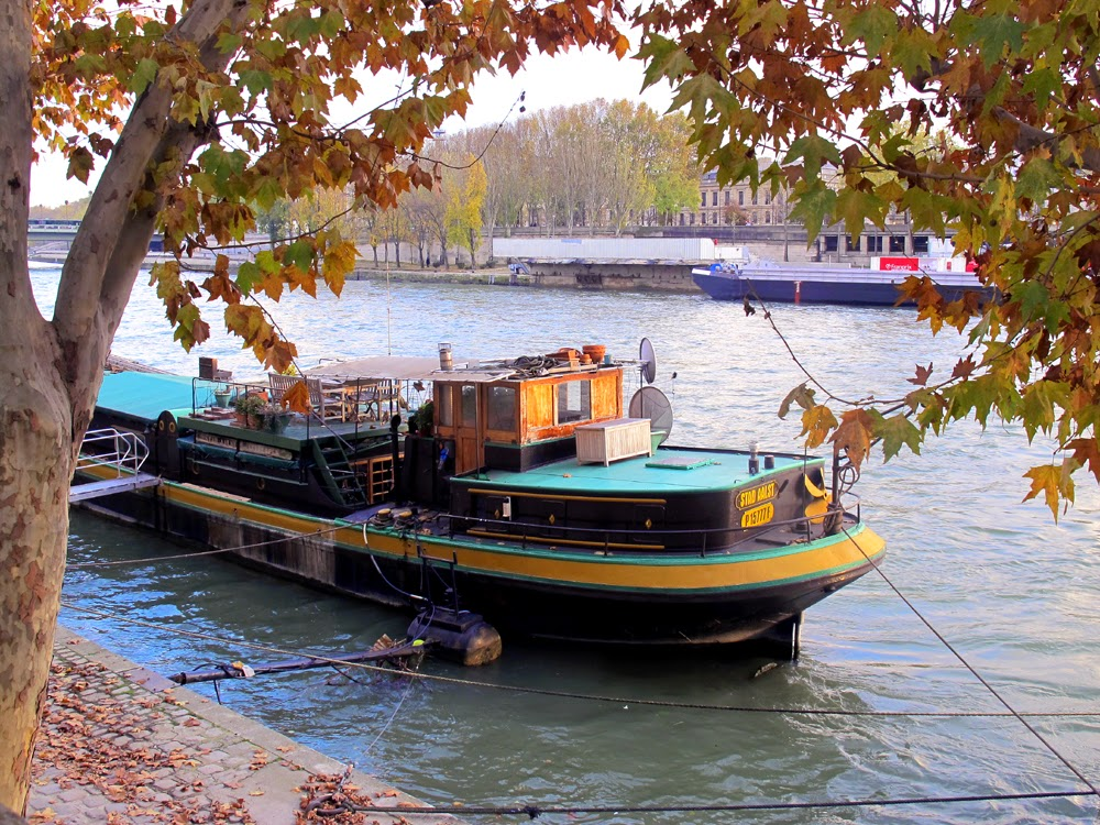 Seine riverboat, Paris