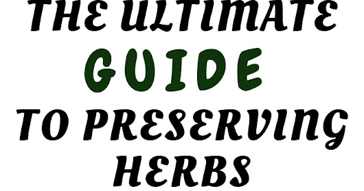 Ultimate guide to preserving herbs
