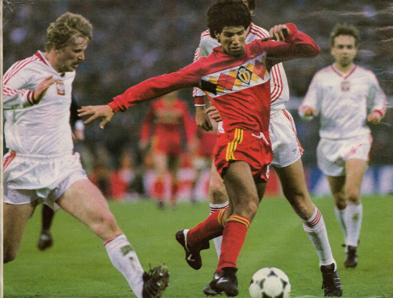 Image result for belgium world cup 1984