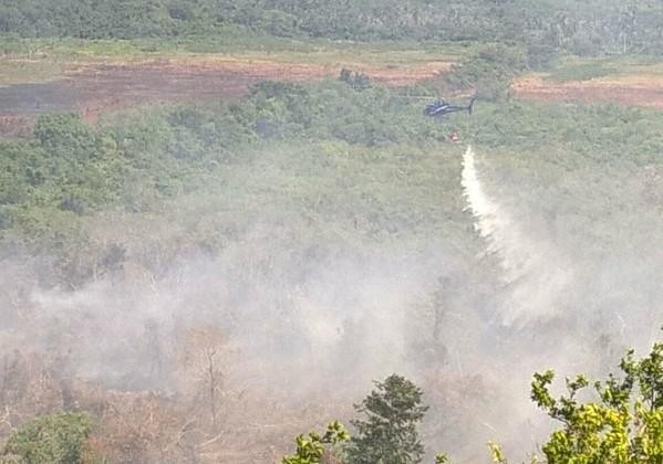Helicóptero ajuda a combater focos de incêndio em áreas de difícil acesso (Foto: Corpo de Bombeiros)