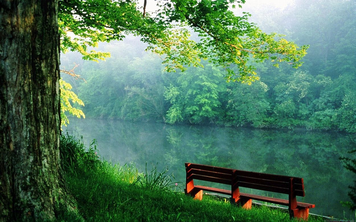 Peace Of Mind Images To Calm The Soul