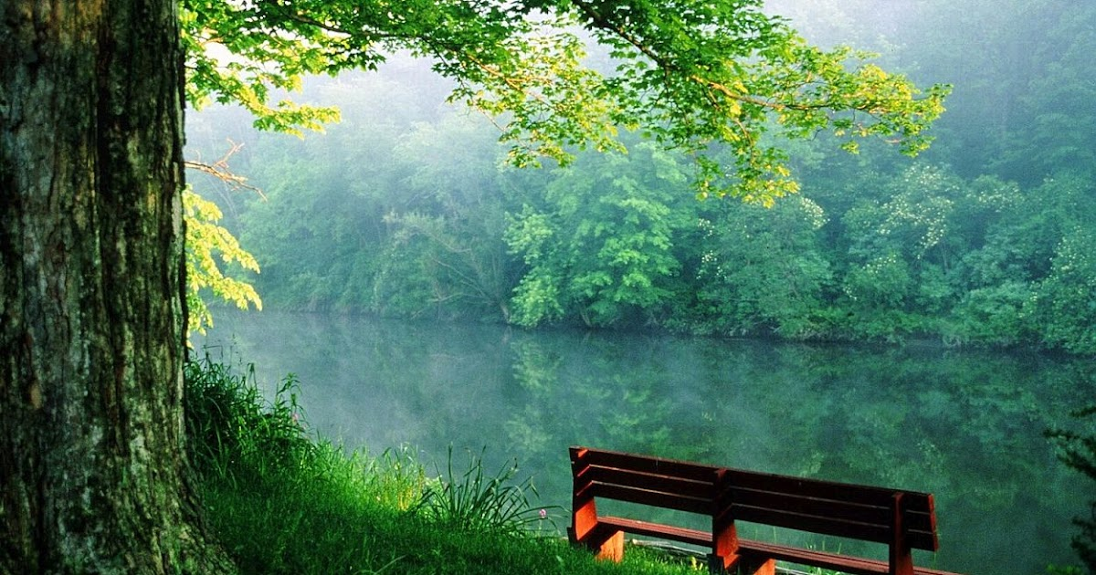 Soothing Peace Of Mind Nature Pictures Peace Of Mind