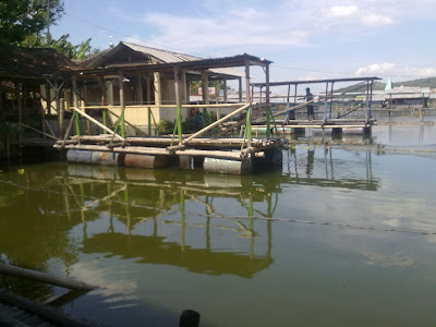Jembatan Penyeberangan Rowo Jombor