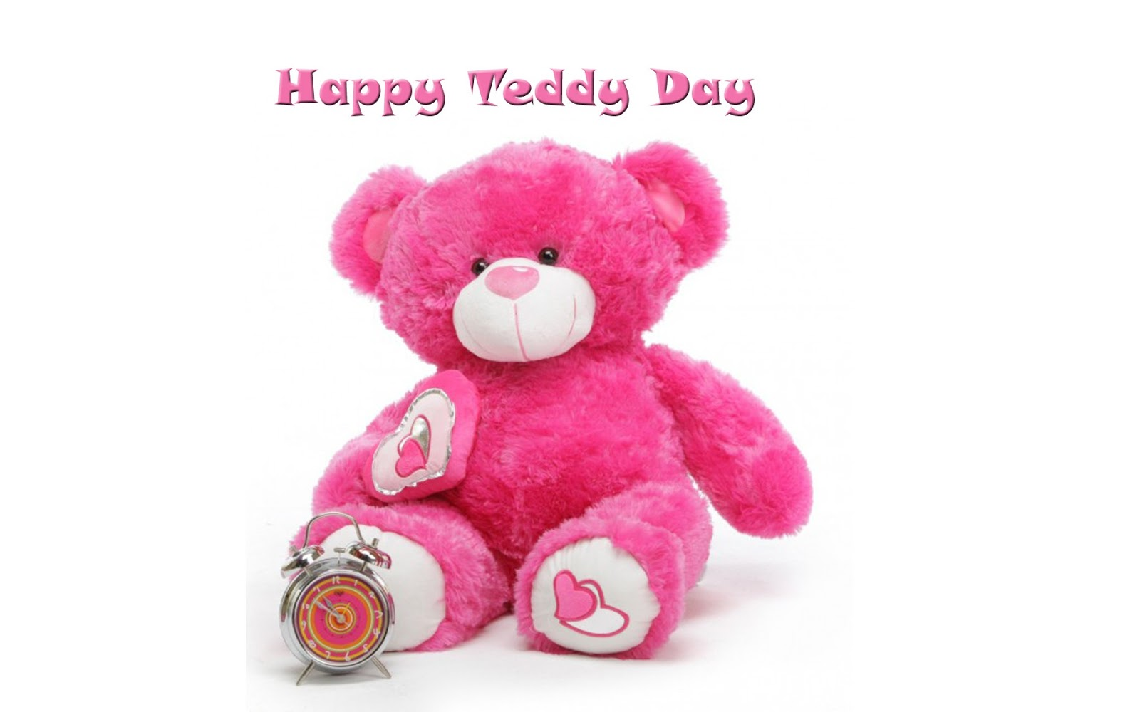 Happy Teddy Day 2019 Images Quotes GIF and Wishes For Your Loved Ones