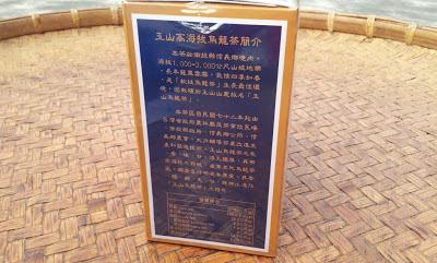 信義鄉農會比賽茶介紹