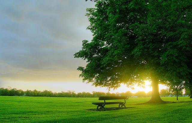 Manfaat Dan Bahaya Sinar Matahari Bagi Kesehatan