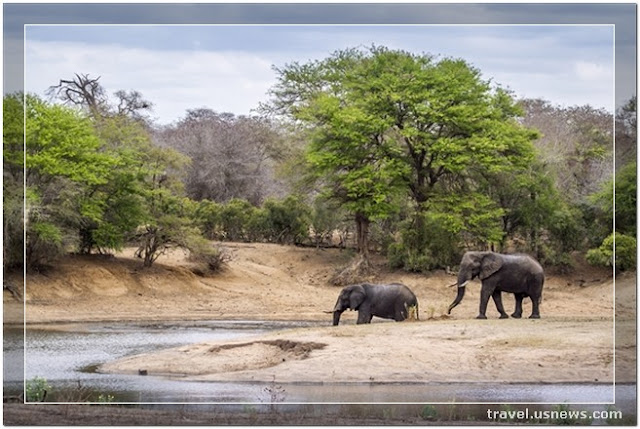 Kruger National Park - Top 7 Best Places to Travel in The Middle East & Africa At Least Once
