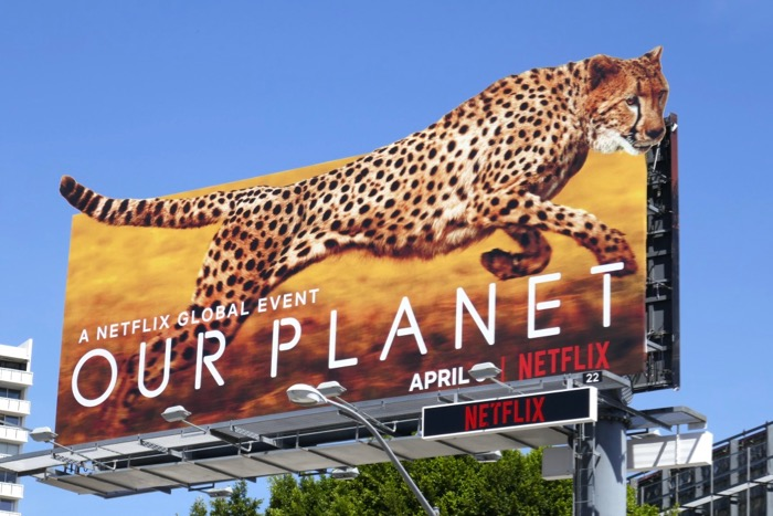 Our Planet Cheetah extension cut-out billboard