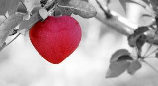 Amore natura
