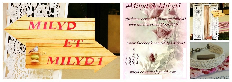 milyd et milyd1 diy un serviteur avec une boite chaussure l 39 atelier champ tre du mois. Black Bedroom Furniture Sets. Home Design Ideas