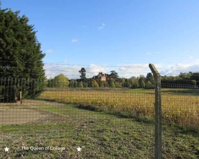 A Countryside Walk Near Jealott's Hill, Warfield