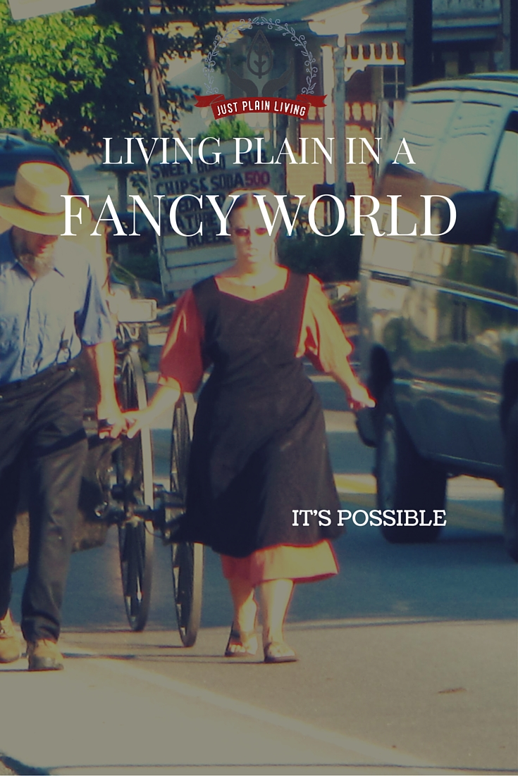 Is it possible for a Christian to be a part of the world while still being apart FROM the world? Learn more about Plain folk and how they live plain in a fancy world.