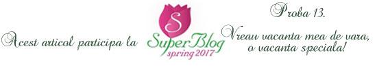 http://super-blog.eu/2017/03/29/proba-13-vreau-vacanta-mea-de-vara-o-vacanta-speciala/
