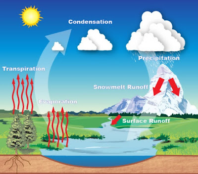 When the Bible mentions science facts, it is right. Case in point, the hydrologic cycle was accurately described first in the Bible.