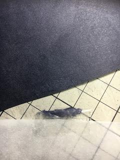 セロテープで傷んだ切り絵