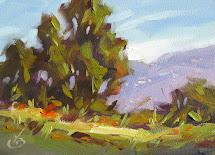tom brown fine art trees mountains