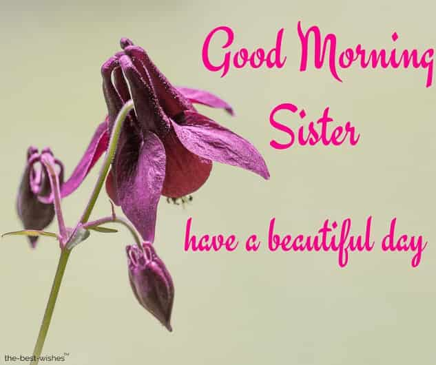 good morning sister have a beautiful day