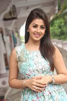 Nikki Galrani at Prema leela pelli gola trailer Launch ~  Exclusive 045.JPG