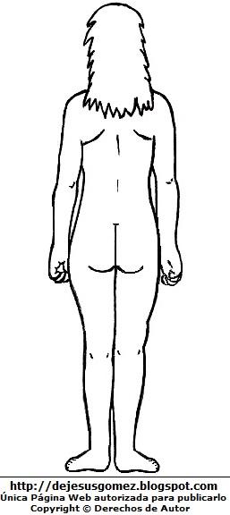 Dibujo del cuerpo humano de la mujer para colorear, pintar e imprimir (Vista posterior o Vista Dorsal o detrás). Dibujo del cuerpo humano de Jesus Gómez