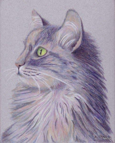 Creaciones Mariluz Cómo Pintar Animales Gato Gris 4