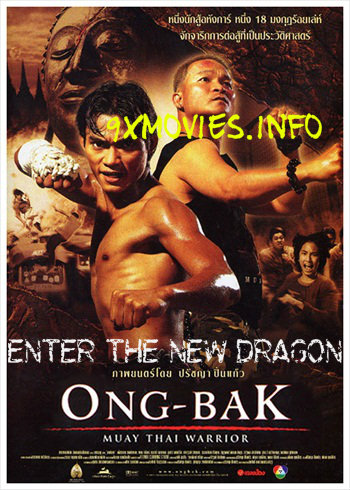 Enter The New Dragon 2005 Hindi Dubbed Movie Download