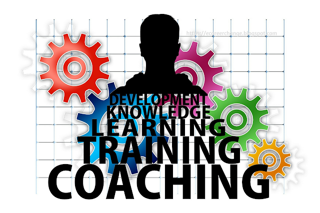 How Career Coach can help with Career Coaching