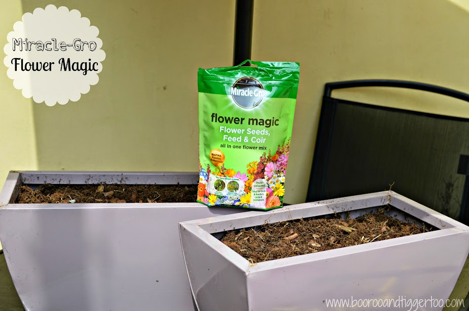 Transforming Flower Pots with Miracle-Gro Flower Magic