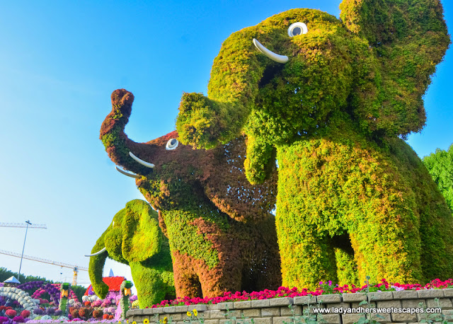 elephants in Dubai Miracle Garden