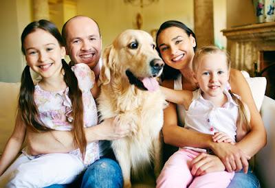 ¿Es complicado tener un perro?