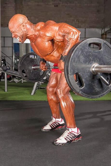 تمارين عضلات الظهر للمبتدئين بالصور والشرح