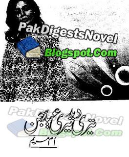 Teri Deed Teri Eid Sjjan By Umm E Mariyam Pdf Free Download
