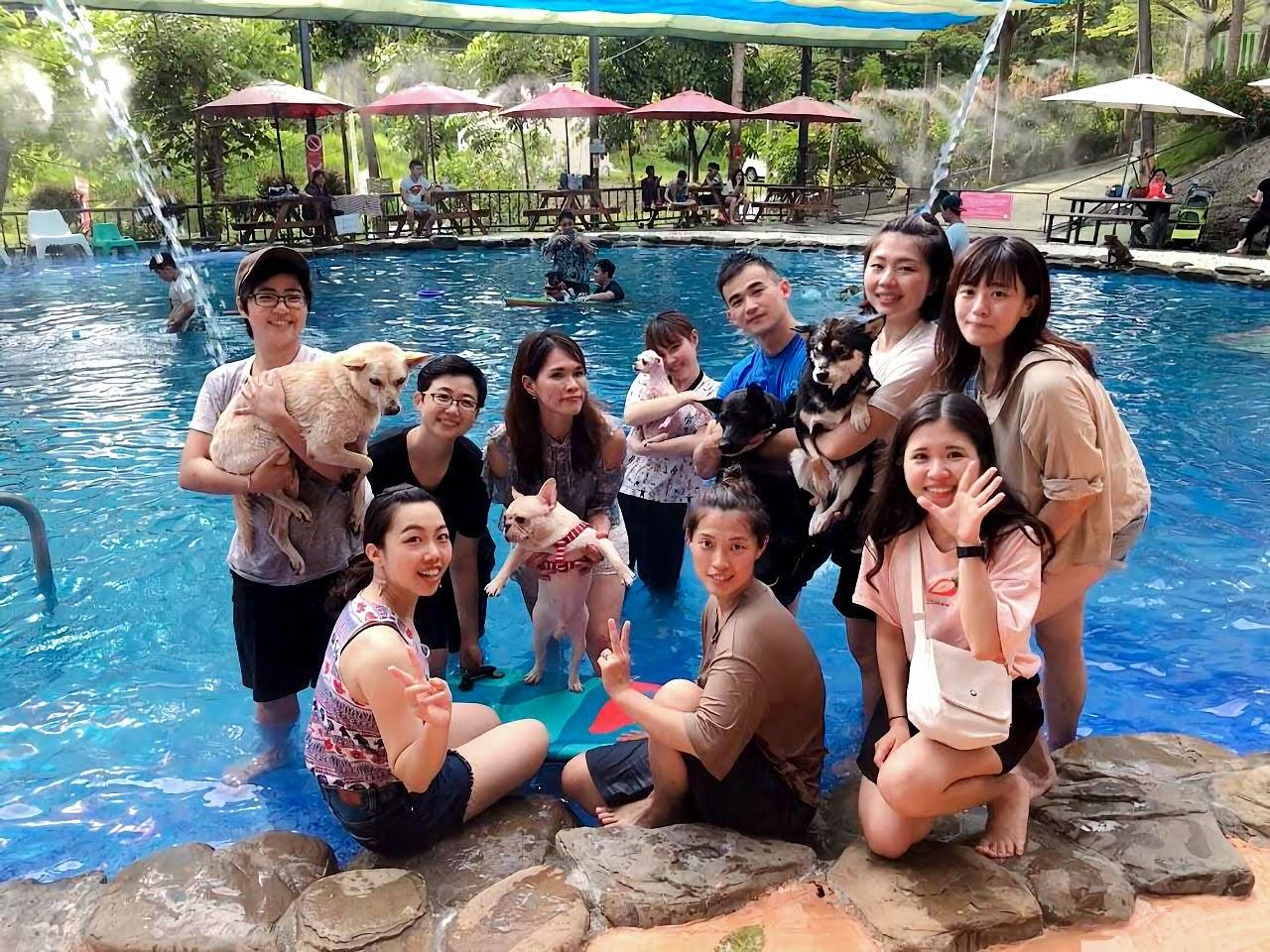 帶寵物❄清涼一夏|台南萌星人友善景點懶人包全攻略|特輯