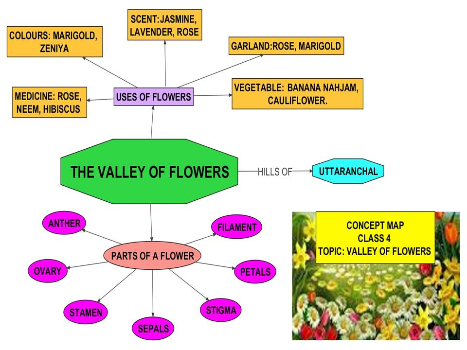 Flower Concept Map.Kv Dgqa K Richard S Evs English Blog Concept Map Class Iv Evs