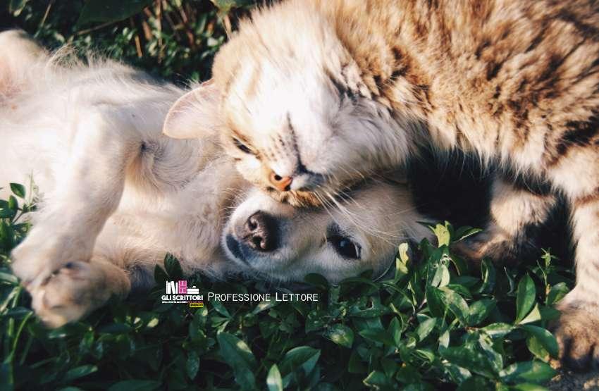 Libri e solidarietà, per aiutare i cani e i gatti di Naturno e Trento