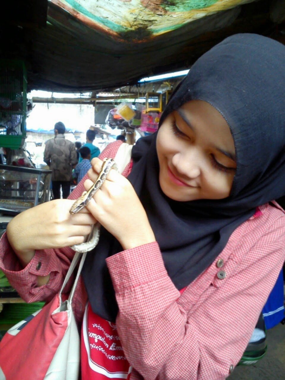 Aku dan Ular di Pasar Burung Sukahaji, Bandung.