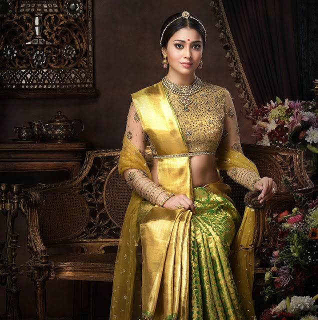 Shriya Saran In Golden Saree Latest Photoshoot Stills