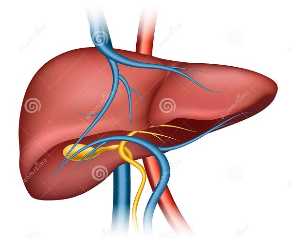 Bệnh viêm gan là gì? Có các loại viêm gan nào?