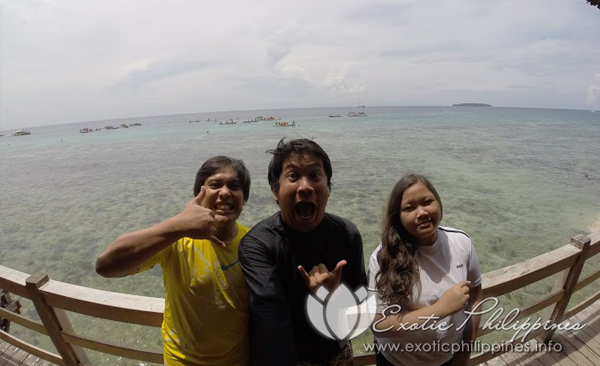 whale shark watching and swimming with the whales in oslob cebu
