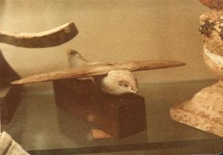 O Pássaro de Saqqara