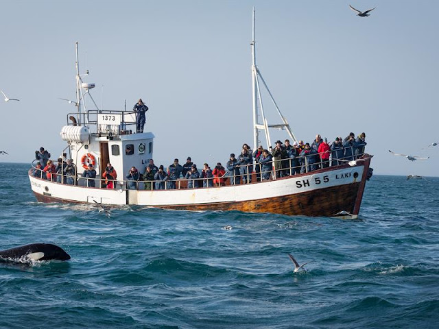 old fishing boat with people on looking for whales