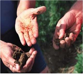 Mempelajari Tentang Tanah