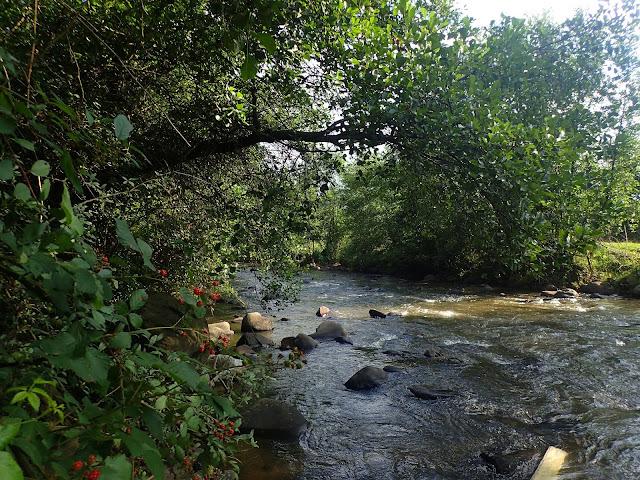 Rzeka w Sapancie