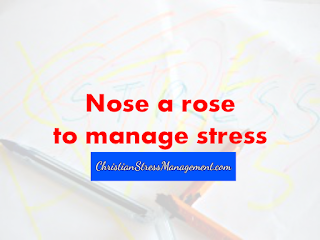 Nose a rose to manage stress