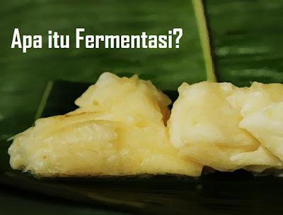 "Pengertian Fermentasi - Secara etimologi, pengertian fermentasi berasal bahasa latin yakni dari kata ""fervere"" yang berarti ""mendidih. Sedangkan pengertian fermentasi secara terminologi bahwa fermentasi adalah menggambarkan aksi ragi pada ekstrak buah selama pembuatan minuman beralkohol. Hal itu didasarkan pada tahapan proses fermentasi yang sebelumnya.  Selain itu, pengertian Fermentasi adalah suatu cara untuk mengubah substrat menjadi produk tertentu yahg dikehendaki dengan adanya bantuan dari Mikroba.  Diketahui bahwa pengertian fermentasi memiliki perbedaan dengan para ahli mikrobiologi dengan ahli biokimia. Untuk pengertian fermentasi oleh ahli kimia adalah proses yang menghasilkan energi dengan perombakan senyawa organik.  Tidak hanya itu, ahli mikrobiologi industri memperluas pengertian fermentasi menjadi segala proses untuk menghasilkan suatu produk dari kultur mikroorganisme. Selain itu, fermentasi juga dapat diartikan bahwa fermentasi adalah sebagai suatu disimilasi senyawa-senyawa organik yang disebabkan adanya aktivitas mikroorganisme.  Macam-macam produk demikian, umumnya memiliki manfaat atau keuntungan yang dijadikan sebagai minuman atau makanan. Fermentasi adalah terdapat tahapan proses yang telah dikenal sejak jaman kuno. Sehingga agar tujuan dan fungsi Fermentasi dapat dimanfaatkan masyarakat, maka diperlukan tahapan yang perlu disediakan diantaranya mikroba sebagai inokulum, tempat (wadah) untuk menjamin proses fermentasi berlangsung dengan optimal, substrak sebagai tempat tumbuh (medium) dan sumber nutrisi bagi mikroba.  Selain itu, berdasarkan penjelasan dari Astawan (1997) bahwa Reaksi yang terjadi selama proses fermentasi tidak lain merupakan proses dari penguraian senyawa-senyawa dengan molekul yang lebih besar khususnya protein yang menjadi senyawa yang lebih sederhana, sehingga lebih dengan mudah dalam mencerna, diserap dan dimanfaatkan oleh tubuh manusia.  Tidak hanya itu, Astawan juga mengatakan bahwa protein ikan yang akan terurai menjad"
