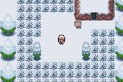 pokemon dark rising screenshot 2